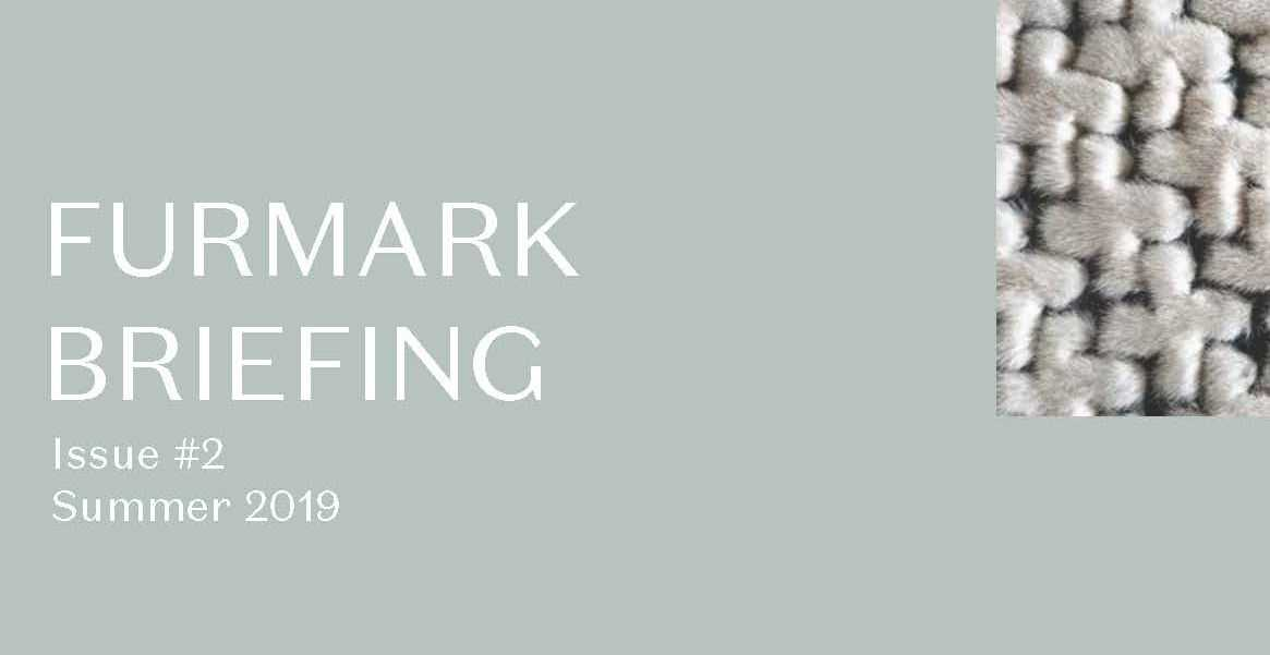 FURMARK Briefing Summer 20194_Page_1