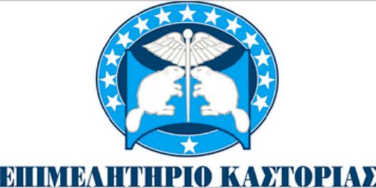 epimelhthrio-kastoriaw.png